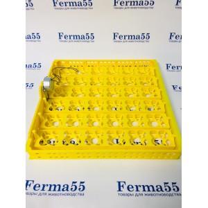 Автоматический лоток для перепелиных, утиных, индюшиных яиц